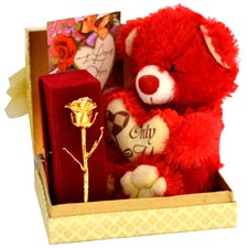Golden Rose with Teddy Greetings