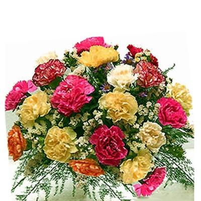 Carnations Bouquet