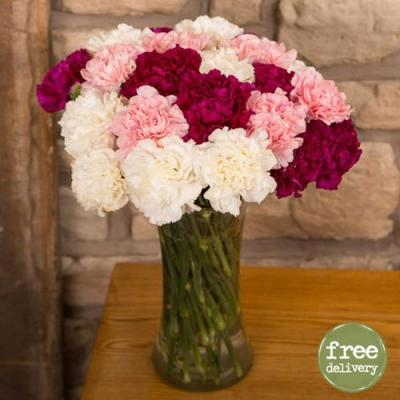 Hidden Love With Carnations
