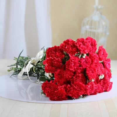25 Ravishing Red Carnations