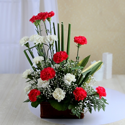 Red and White Carnations with Fillers