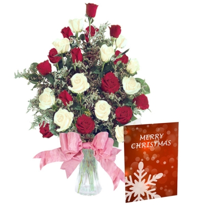 Vase Arrangement of Red and White Roses on Christmas