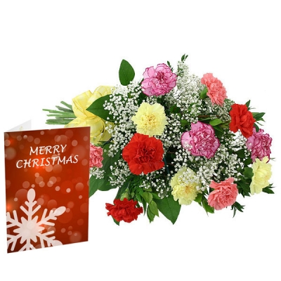 Carnations and Greeting Card on Christmas