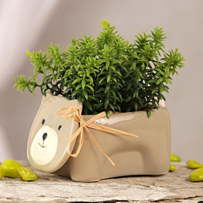 Ceramic Teddy Pot with Artificial Green Leaves