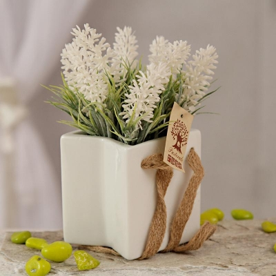 White Ceramic Pot with Matching Flowers