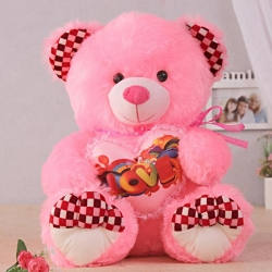 Hugging Bear : Love Soft Toys