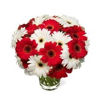 Bouquet of Red and White Gerberas