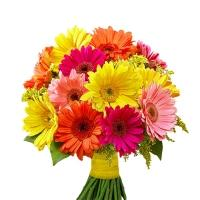 15 Mixed Gerberas Bouquet