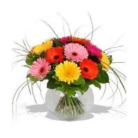 Assorted Daisies Vase