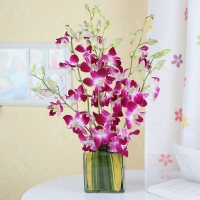 Lovely Purple Orchid Bouquet in Glass Vase