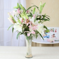Tempting Pink & White Lilies in Vase