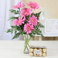 Attractive Pink Gerberas & Chocolates