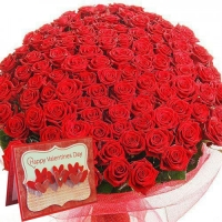 Red Roses Bunch For Your Valentine.