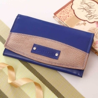 Multi Pocket Blue Wallet