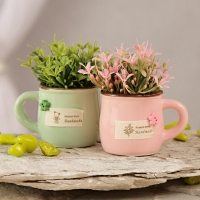 Ceramic Pot Set with Artificial Flowers