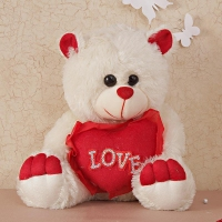 Red and White Teddy Bear with Heart